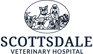Scottsdale Veterinary Hospital
